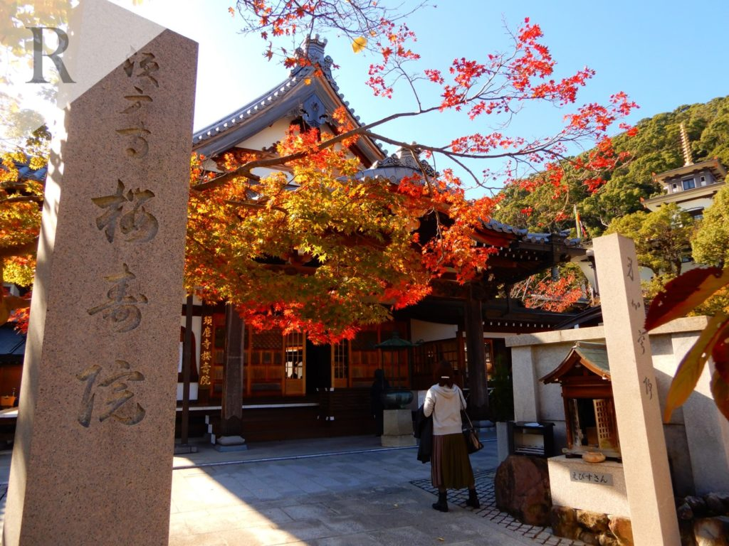 須磨寺 櫻寿院