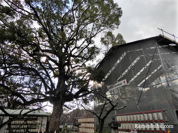 平野神社 拝殿