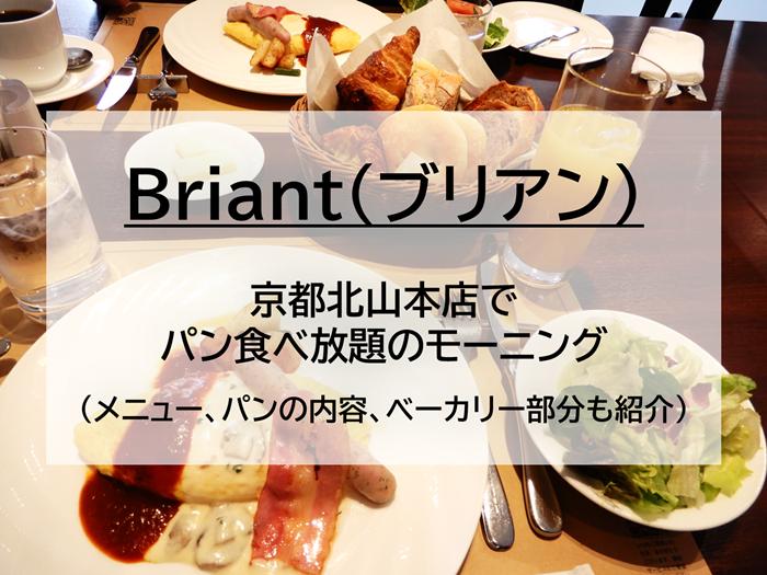 pan-briant-ic