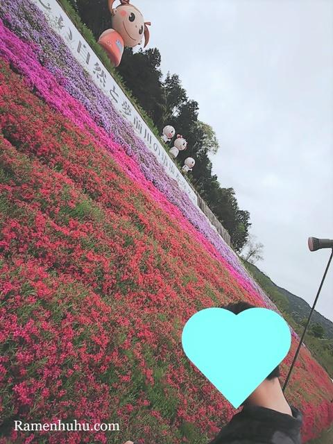 芝桜の小道(ヤマサ蒲鉾工場)3