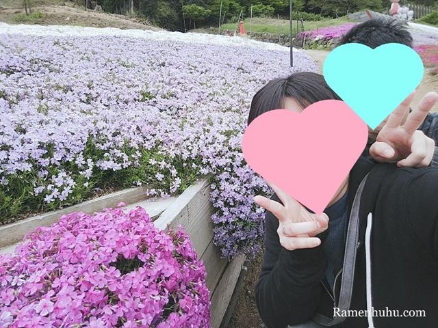 芝桜の小道(ヤマサ蒲鉾工場)4