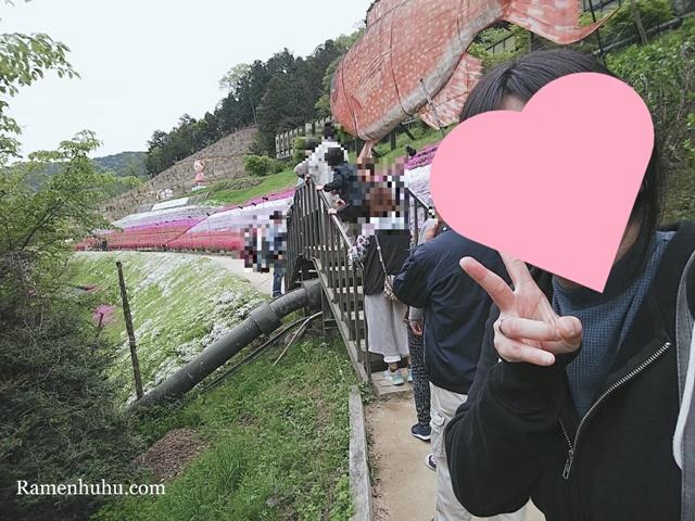 芝桜の小道(ヤマサ蒲鉾工場)6