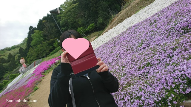 芝桜の小道(ヤマサ蒲鉾工場)7