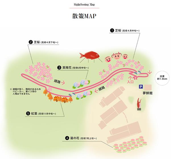 芝桜の小道(ヤマサ蒲鉾工場)13