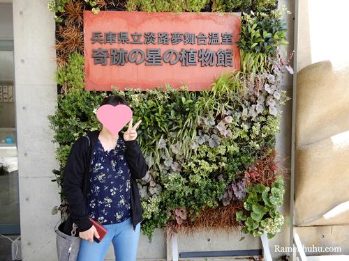奇跡の星の植物館 入園料