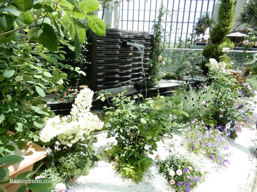 奇跡の星の植物館 癒しの庭