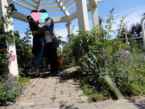 奇跡の星の植物館のローズガーデン4