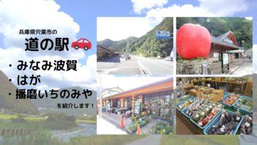 兵庫県宍粟市にある道の駅(みなみ波賀、はが、播磨いちのみや)に行ってきました