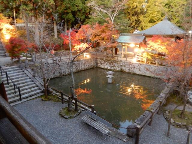 御嶽山 播州清水寺 放生池・沙羅の木