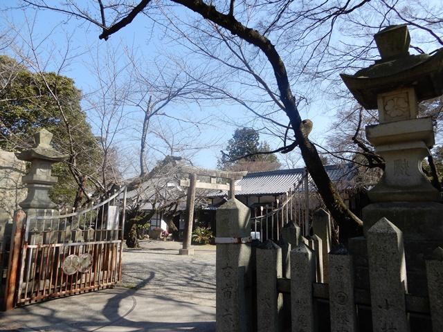 姫路神社の境内