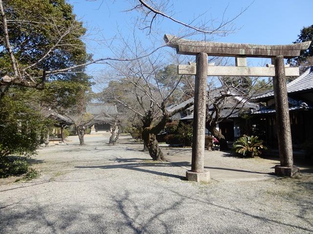 姫路神社の境内の鳥居