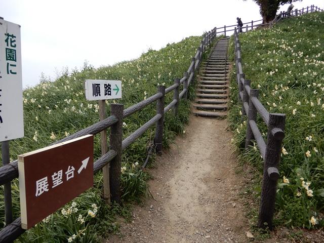 淡路島灘黒岩水仙郷の展望台