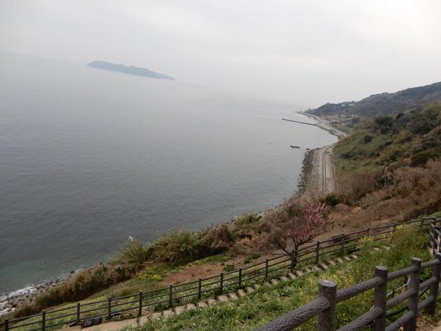 淡路島灘黒岩水仙郷から見る沼島
