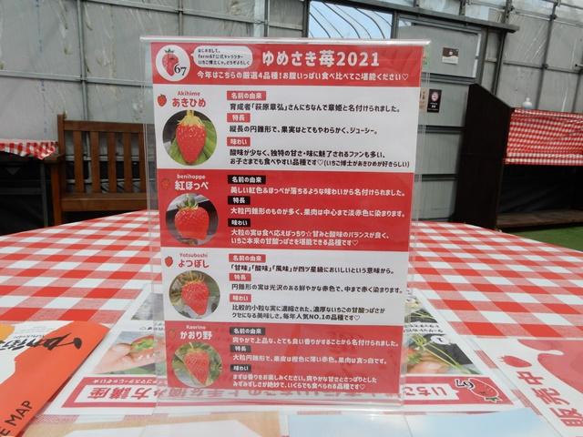 ゆめさき苺ハウス いちごの種類