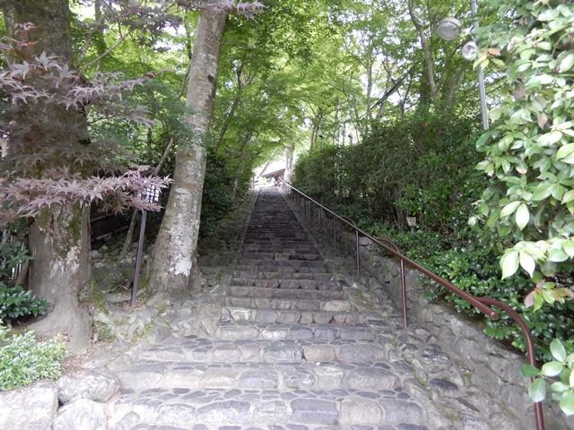 鈴虫寺 階段