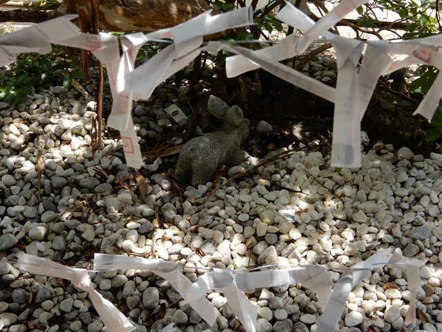 白兎神社 隠れうさぎ