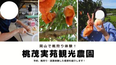 【口コミ】岡山白桃工房(桃茂実苑観光農園)で桃狩り体験してきた!