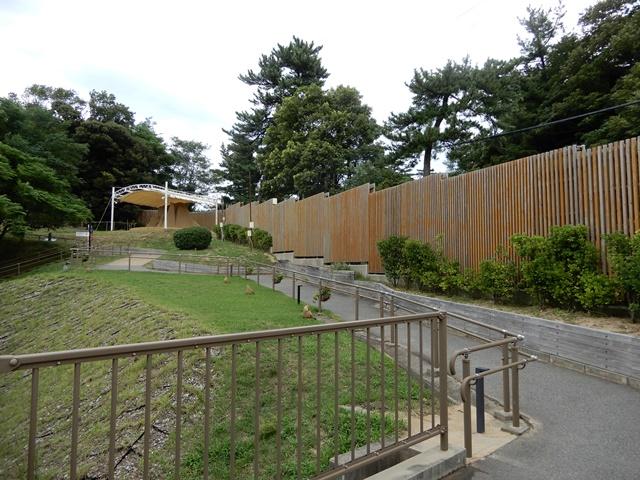 鳥取砂丘 砂の美術館 展望広場